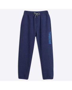 Animal Cortex Sweat Pants, Nautical Blue - save 50%