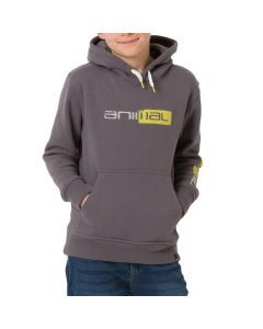 Animal Roadie Boys Hoodie, Grey Marl - save 35%