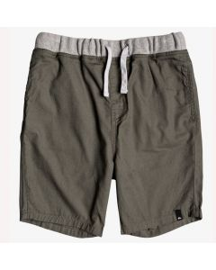 Quiksilver Boys Canvas Shorts