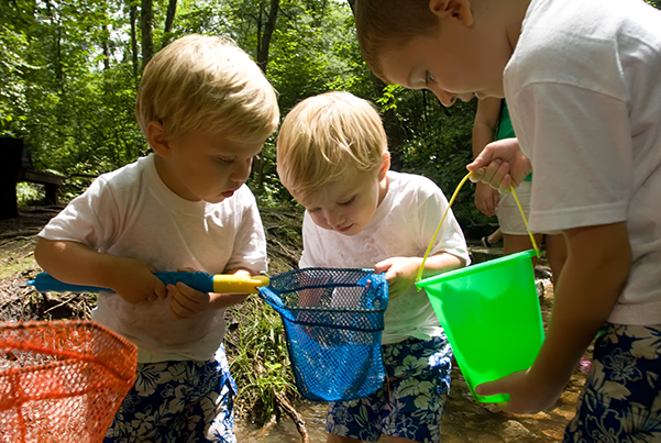 Three young boys hold pond dipping nets