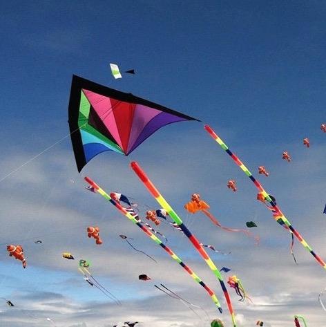 kite flying beach